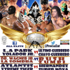UPDATED (11/16): Poster-Mania!!! This Week's Lucha Shows!!! (11/10/14 thru 11/16/14)