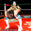 Lucha Report For 11/26/14