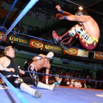 CMLL120411P2