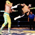 CMLL052912P8