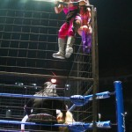 CMLL062912P22
