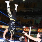 CMLL081212P31