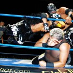 CMLL090912P17