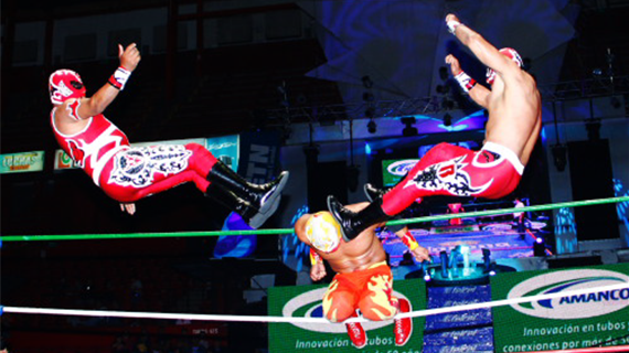 CMLL122312fp7