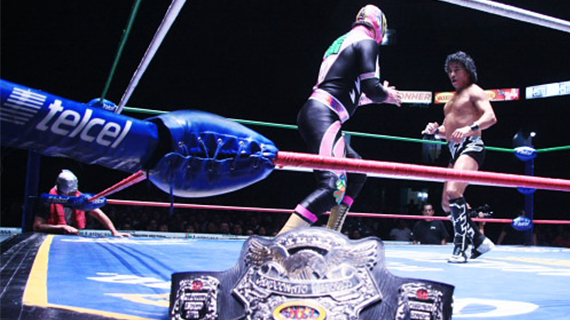 CMLL122512fp6