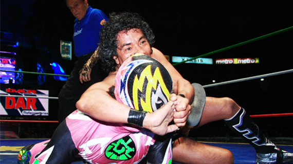 CMLL122512fp8