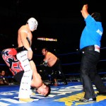 CMLL020513P23