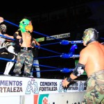 CMLL020513P25