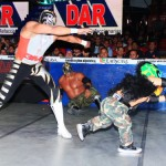 CMLL020513P29