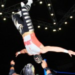 CMLL020513P31