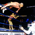 CMLL022213P25