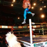 CMLL022413P24