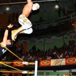 CMLL022413P31